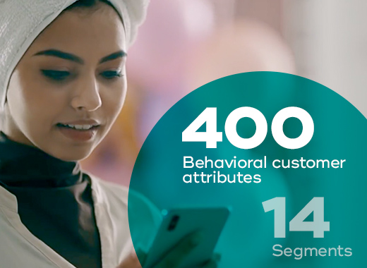 Over 400 attributes categorize stc's customers into 14 primary behavioral customer segments