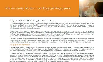 Maximizing Return on Digital Programs with Teradata Interactive