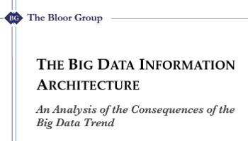 The Big Data Information Architecture: An Analysis of the Consequences of the Big Data Trend