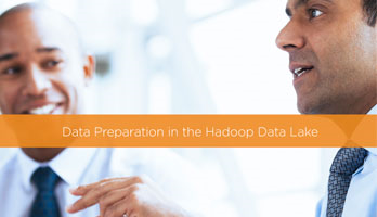 Data Preparation in the Hadoop Data Lake