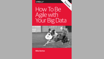 How To Be Agile with Your Big Data